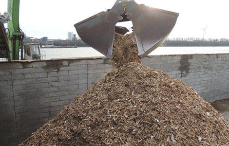 Biomass5